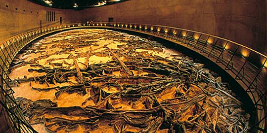 「地底の森ミュージアム」の写真
