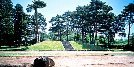 「多賀城廃寺跡」の写真