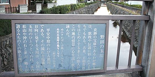 「野田の玉川」の写真