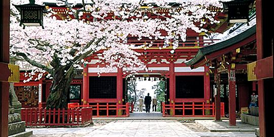 「塩釜神社」の写真