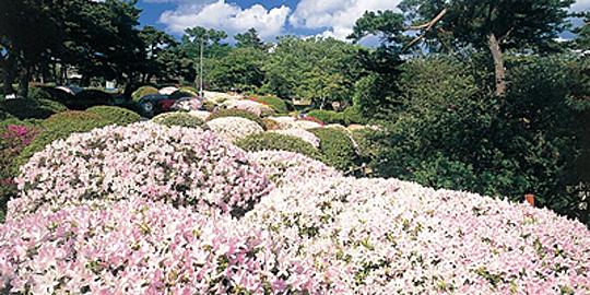 「日和山公園」の写真