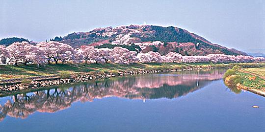 「船岡城跡」の写真