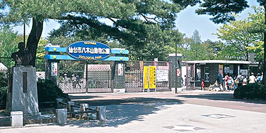 「八木山動物園」の写真