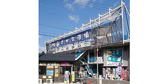 「松島おさかな市場」の写真